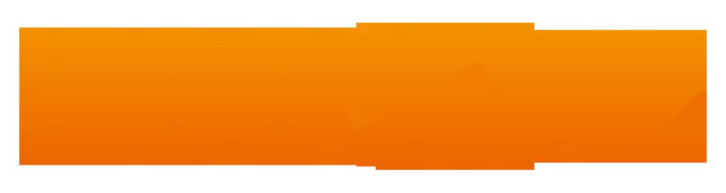 100p_NL_logo_2015